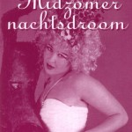 flyer midzomernachtsdroom